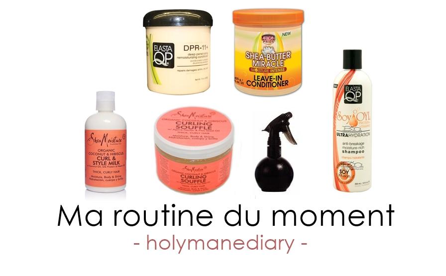 Bien connu Ma routine capillaire du moment – HolyMane Diary CV79