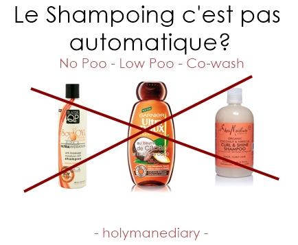 le shampoing c est pas automatique no poo low poo et co wash holymane diary. Black Bedroom Furniture Sets. Home Design Ideas