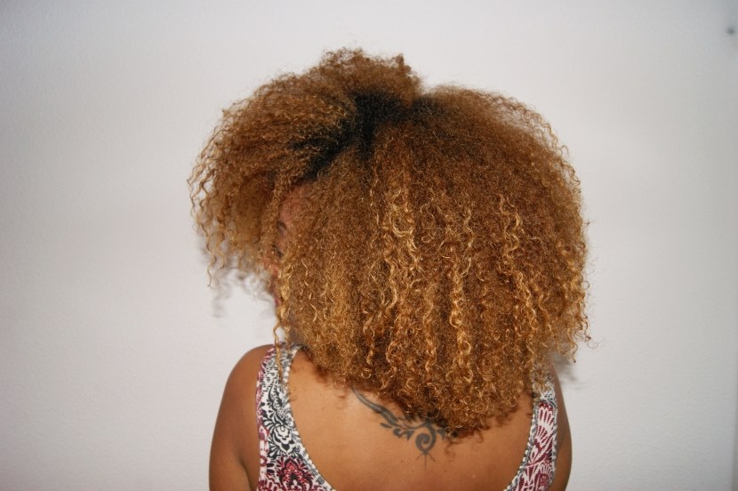 Wash And Go Sur Cheveux Cr 233 Pus Holymane Diary